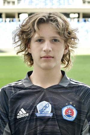Luka Petrič