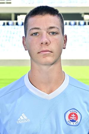 Michal Svoboda